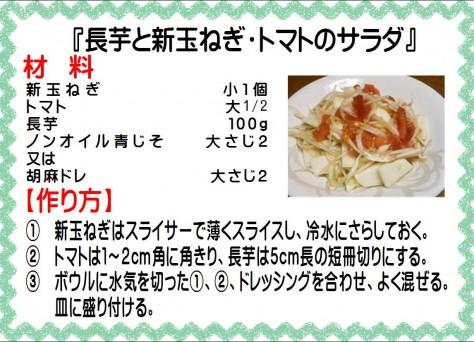 長芋と新玉ねぎ・トマトサラダ>