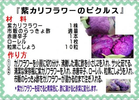 紫カリフラワーのピクルス>