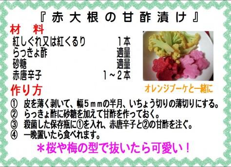 赤大根の甘酢漬け>