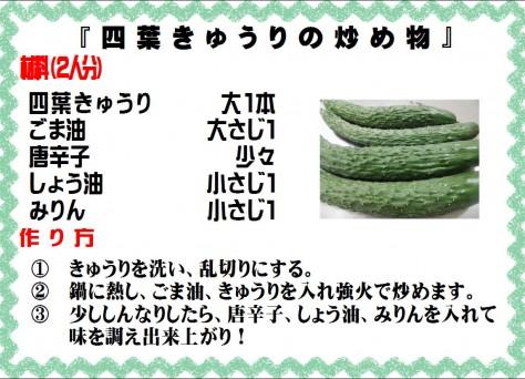 四葉きゅうりの炒め物>