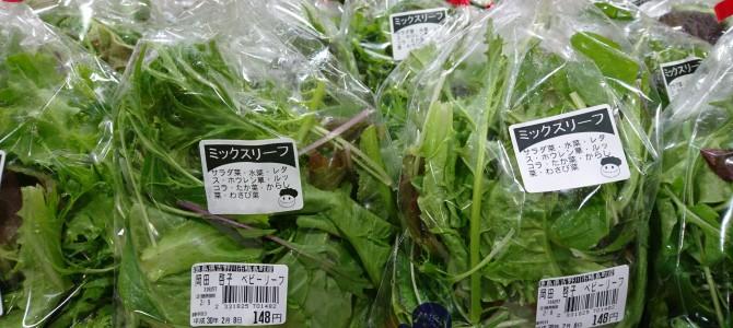 2月8日 本日は二日連続肉の市です‼️