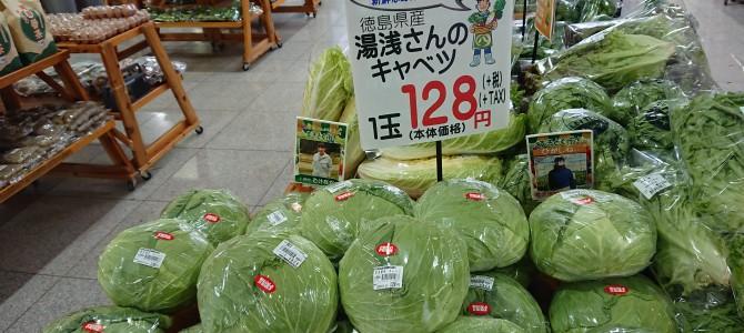 11月5日 本日北島店第3弾
